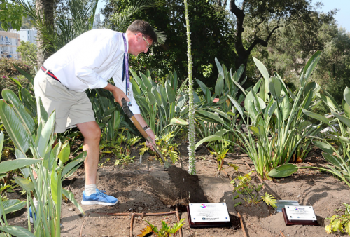 Tree Planting Ceremony marks Island Games